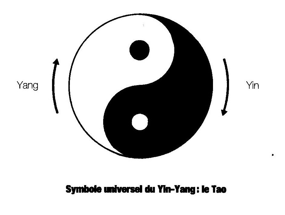 Exceptionnel médecine traditionnelle chinoise | Reiki, Shiatsu, Hypnothérapie  ZM79